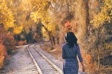 新疆最美秋景,北疆、南疆怎么选?看这里!