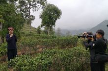 上周末,我们在龙州八角乡后山茶园探班《龙州媚》MV杀青后,下山时是18:12,天还亮,明知道下过雨后