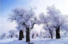 雪后的奎屯