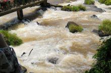 伊瓜苏大瀑布,景色真的很漂亮 很震撼。位于巴西与阿根廷交界处。这里环境保护非常好,人们环保意识也很强