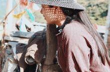 川西达木村:藏在原始森林王国里的千年藏寨