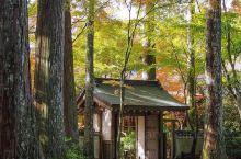 Kyoto·三千院