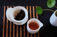民宿的喝茶日常