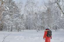 在粉雪天堂如戏精附体般尽情撒欢