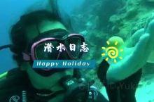我的潜水日志——菲律宾薄荷岛