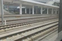 打卡东海高铁站