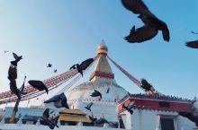 博达哈大佛塔   💗推荐理由: 是世界文化遗产之一,是世界最大的覆钵体半圆形佛塔。 是尼泊尔藏传佛教