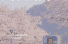 日本关西自由行·冈山县无人樱花车站月田站