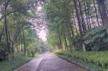 苏州阳澄湖一周末可以慢生活的地方湿地方