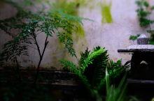 来一次雨夜庭院的约会,浪漫至极!