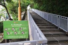 京士柏山,一个位處九龙之小山,上設天文台監测站,现周圍建设為一个休憩之山林公园,其中綠树林蔭,城市山