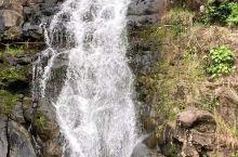 WaimeaValley-在瀑布下游泳