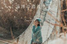 冬日淄博旅拍Ⅰ去这里看浪漫芦花呀