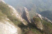 爬山去啦,这里的环境优美,真好。