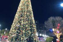 来迟的圣诞树 (蹭广场上的)