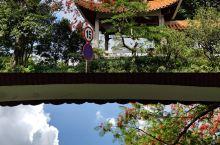 """🎫门票🎫 关注微信公众号""""深圳市仙湖植物园""""可线上购买,成人15元/人,学生5元/人,60岁以上长者"""