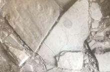 安顺鱼龙化石,神奇的大自然