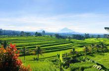 巴厘岛的世界遗产保护区