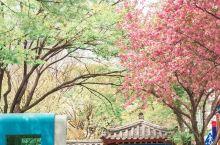 繁华的江南区中,距今已有1200多年