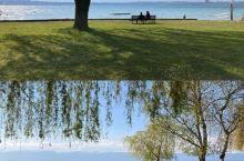 日内瓦格朗日公园丨天鹅湖野营