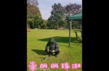 :/ 崇明明珠湖度假村%拥抱