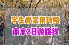 学生党怎么游南京