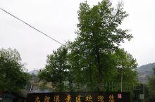 九鲤溪,国家3A级旅游景区,值得一探……
