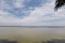 真正的黄河