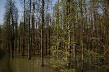 青山湖打卡