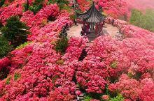 麻城乌龟山