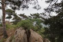 邹城的路一修到每个山下,骑车开车都方便,风景优美空气好,值得一去!