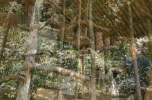 沙巴小众却有趣的景点:马里马里文化村1