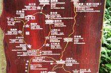 都江堰+青城山