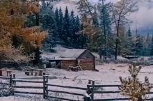雪后的清晨