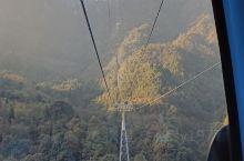 湖南莽山国家森林公园是个很适合度假锻炼身体的好去处,东门进去有缆车乘坐上山,单程耗时18分钟,可以欣