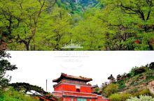 登泰山|十八盘的自然风光与石刻文化