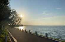 太湖的早上太美了,空气清新,很适合跑路。