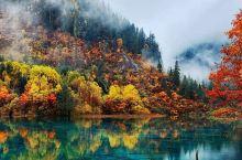 层林尽染瑶池碧水秋天是人间童话-九寨沟