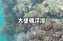 纯净之旅:圣灵群岛的海底堡礁世界