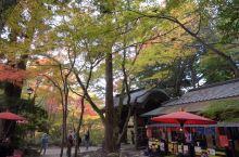 瑞宝寺公园的秋天美景!