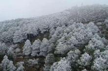 冰雾缭绕中风景