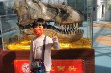 参观了诸城恐龙博物馆和暴龙馆。2021年终于让二宝心心念念的一个愿望实现了。看到了真正的恐龙化石,霸