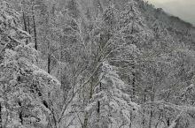 去雪乡的路上拍的