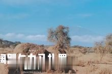 谢霆锋拍《锋味》的肯尼亚长颈鹿庄园