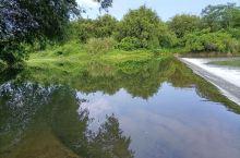 原本清澈到底的河流,原本可以直接喝的水,如今政府监管不力,污染严重,连去游泳都怕怕了😱