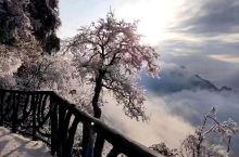 天门山赏雪、凤凰古城漫步、芙蓉镇迷人夜景