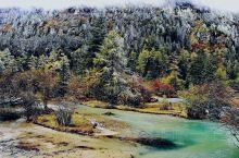 一路上山 林海雪原 野地温泉 高山天浴