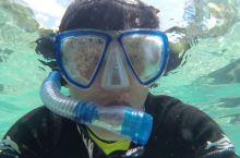 奥兰多潜水美景