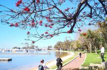 澳大利亚风景