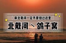秦皇岛丨来北戴河必打卡鸽子窝。